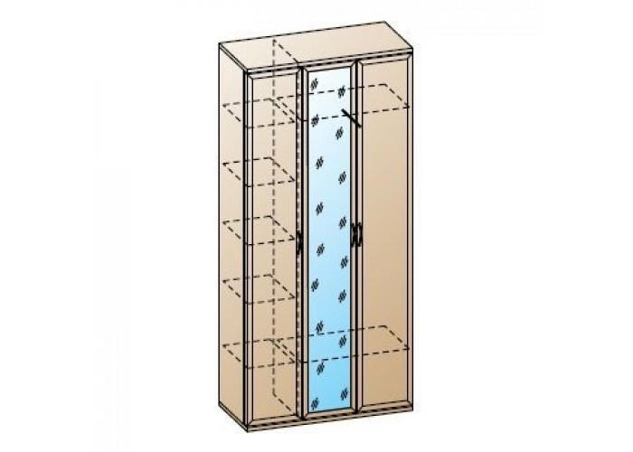 Шкаф многоцелевой ШК-1031 (2224x1080x352) в Калуге
