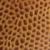 коричневый муар нубук светло коричневый
