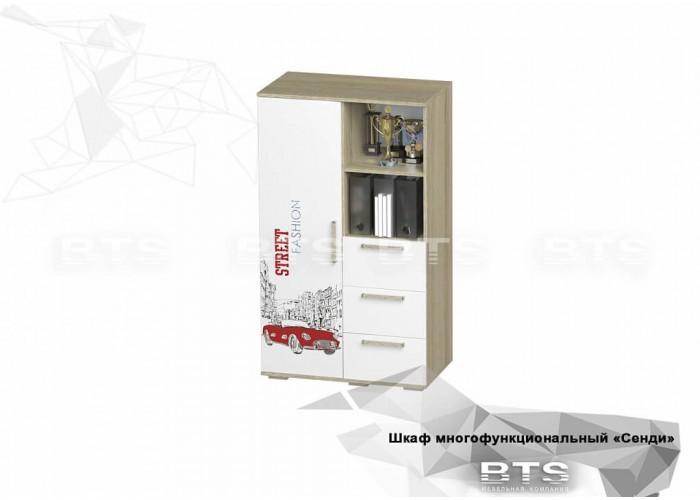Шкаф СЕНДИ ШК-10 (1376x802x460) в Калуге