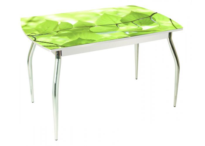 Стол обеденный 5.1 Берёзовый цвет в Калуге