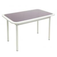 Стол обеденный Стиль 1 пунто фиолетовый