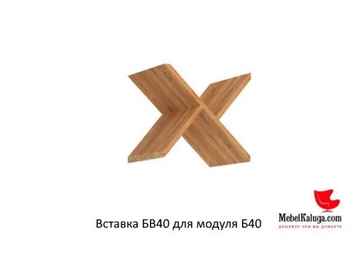 Вставка БВ40 для модуля Б40 в Калуге